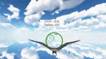 BirdVR